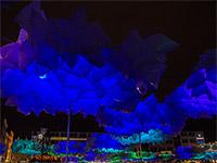 blaue-nacht-impressionen-06