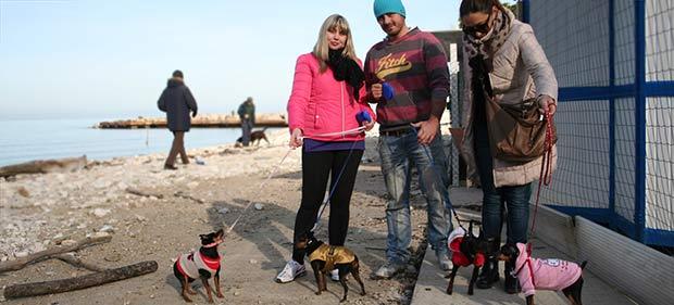 Hunde Besitzer am Strand