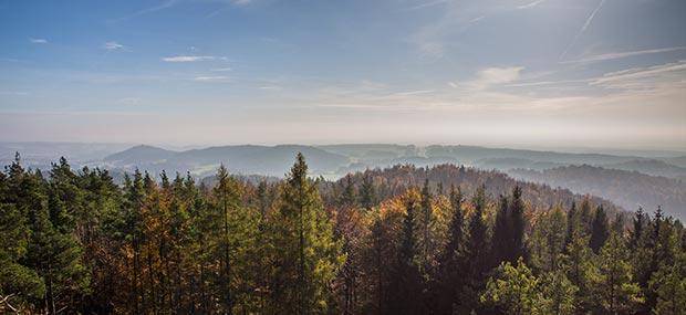 Herbstwald Fränkische Schweiz