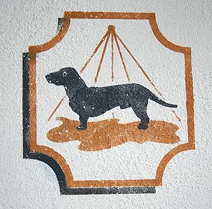 Icon Wand Hundebad