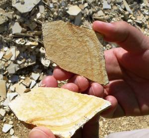Fossiliensteinbruch